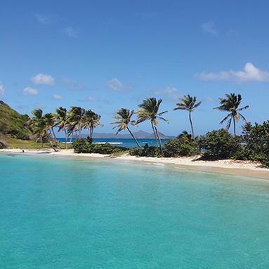 croisières catamaran îles Grenadines départ Martinique