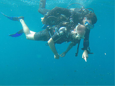 Croisière plongée catamaran caraibes