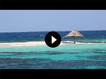 Croisière plongée en catamaran dans les grenadines