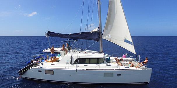 séjours en catamaran iles grenadines départ martinique